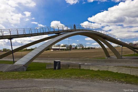 "(Italiano) Norvegia: ponte ""Leonardo da Vinci"""