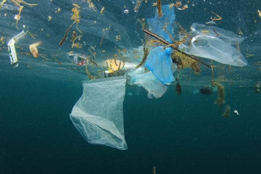 La Norvegia protagonista NELLA LOTTA ALL'INQUINAMENTO DA PLASTICHE