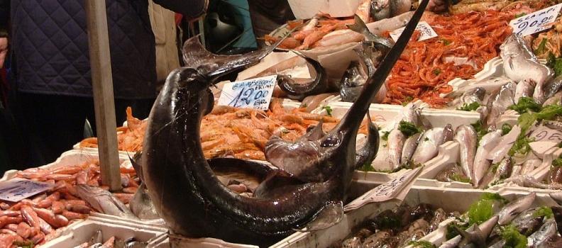 Esportazioni di prodotti ittici norvegesi: un settore in continua crescita