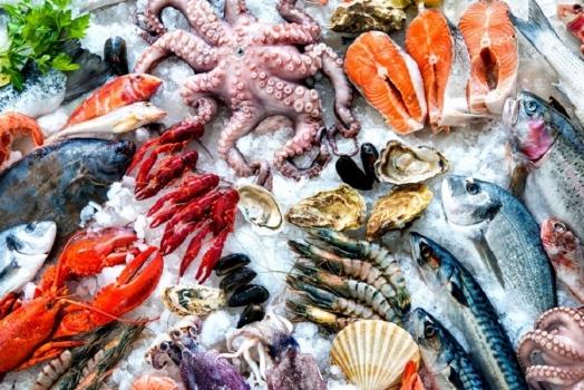Le esportazioni di prodotti ittici Norvegesi superano i 71 miliardi di NOK nel 2018