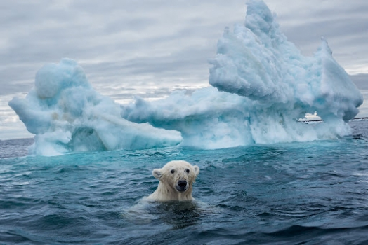 (Italiano) Norvegia: incontro sui cambiamenti climatici presso presso la Norwegian Climate Foundation