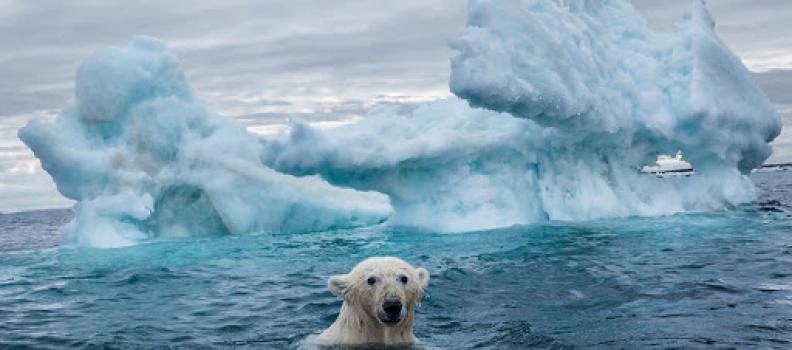 Norvegia: incontro sui cambiamenti climatici presso presso la Norwegian Climate Foundation