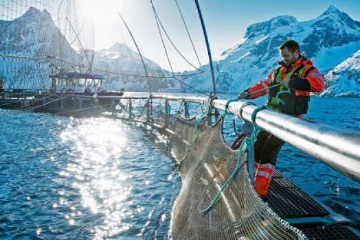 (Italiano) Norvegia: Oslo minaccia l'Ue e la GB di chiudere i suoi mari se non viene trovato un accordo