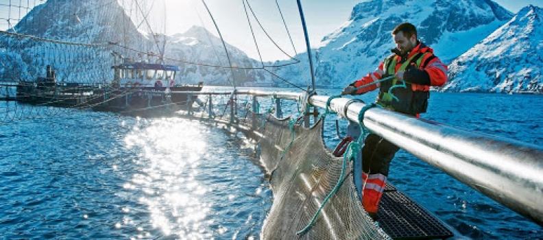 Norvegia: Oslo minaccia l'Ue e la GB di chiudere i suoi mari se non viene trovato un accordo